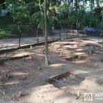 Resgate-Arqueológico-no-Jardim-Zoológico_2_1-11